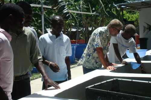 Aquaculture workshop in Leogane, Haiti - Image 12