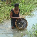 Aquaculture workshop in Leogane, Haiti - Image 7